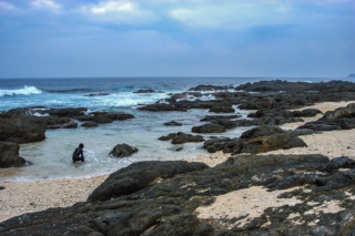 2004年の屋久島